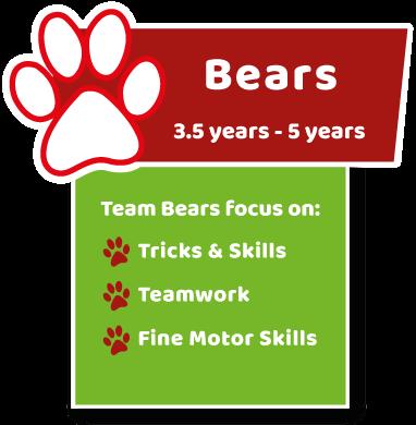Age Group Bear